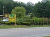 Tree City Landscaping &amp; Nursery